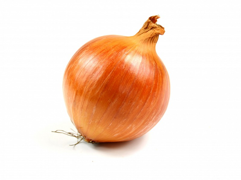 onion old